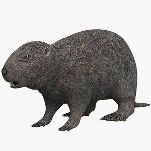 max beavers