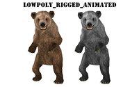 wild animal bear 3D