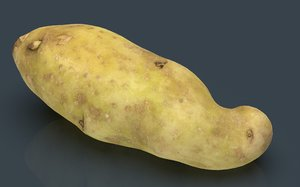 3D red potatoe model