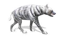 Hyena white rigged animated lowpoly