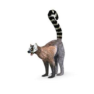 lemur monkey 3D model