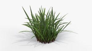 3D grass cluster 003 -