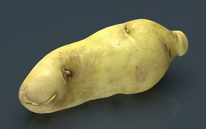 3D model red potatoe 2