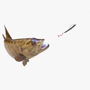 smallmouth bass 3D model