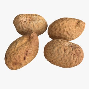 photogrammetry unshelled peanuts 3D model