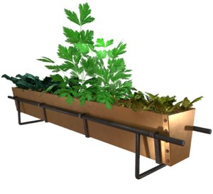 3D brass herb food model