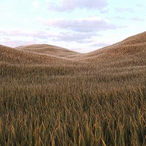 grass 5 3D model