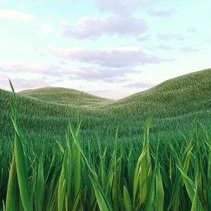 grass 3 model