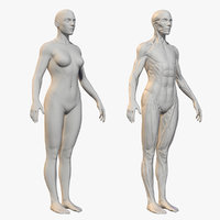 Character - Female Anatomy Body Base HighPoly
