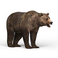 bear materials 3D model