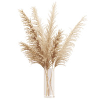 Big dried flower pampas grass in glass vase