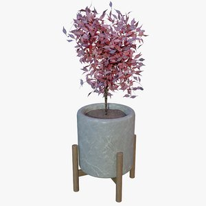 office plant model
