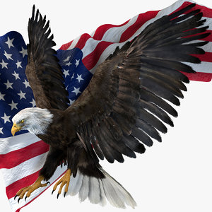 realistic eagle rigged america model