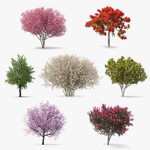 3D flowering bushes trees 4 model