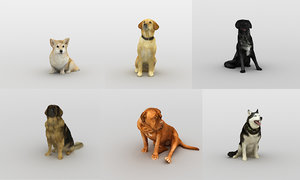 3D scanned dogs model