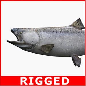 king salmon 3d model