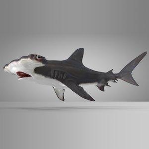 3D model hammerhead shark rigged l586