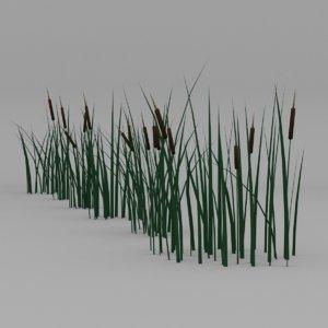 cattail 3D model