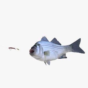 3D white bass model