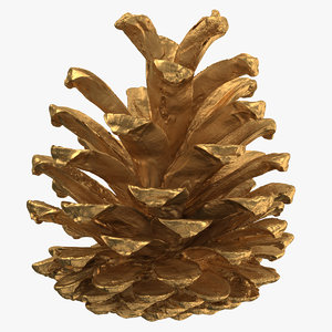 3D pine cone 01 gold