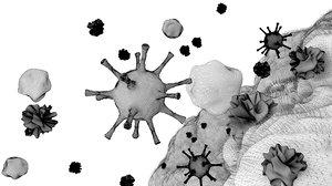 3D model corona virus