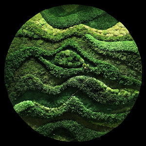 moss wall 3D