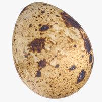 Quail Egg 01
