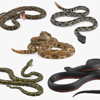 3D rigged snakes 3 model