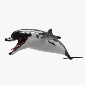dolphin animation unity 3D model