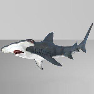 3D model hammerhead shark rigged l587