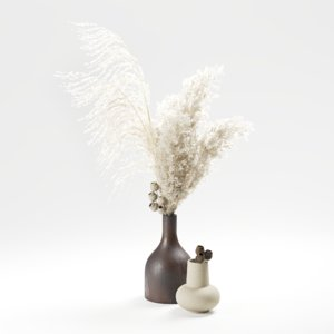 3D model set vases pampas grass