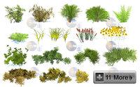 natural forest bushes 3D model