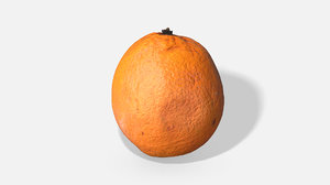 fruit orange - photoscanned 3D model