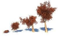 3D stylized trees