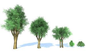 3D model stylized trees