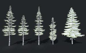snow winter trees spruce model