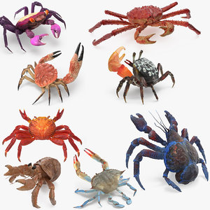 3D crabs 3 rigged