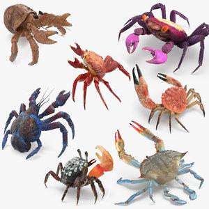 3D crabs 2 rigged model