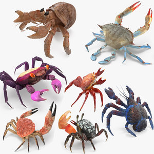 crabs 2 rigged 3D