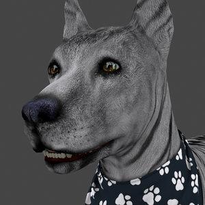 3D rigged female dog idle