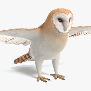 3D barn owl