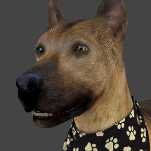 rigged female dog idle 3D