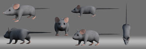 cartoon mouse model