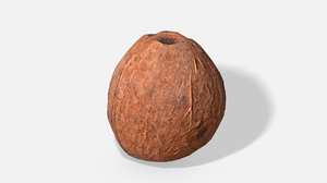 exotic fruit coconut - 3D model