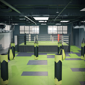 3D boxing gym