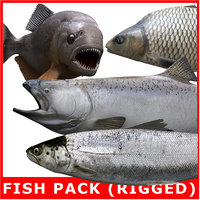 Fish Pack (4 Rigged Models)