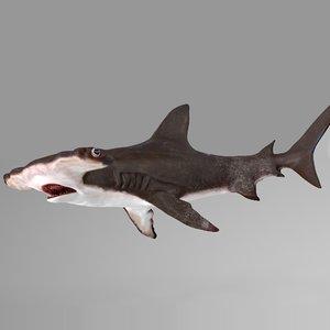 3D hammerhead shark rigged l595 model