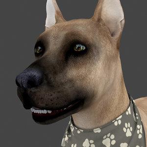 rigged female dog idle 3D model