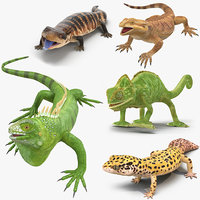 3D lizards rigged
