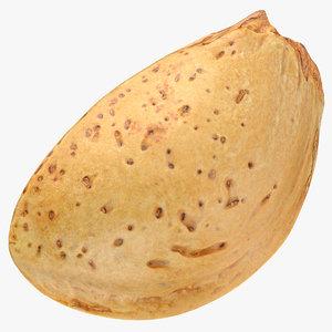 3D almond shell 05 model